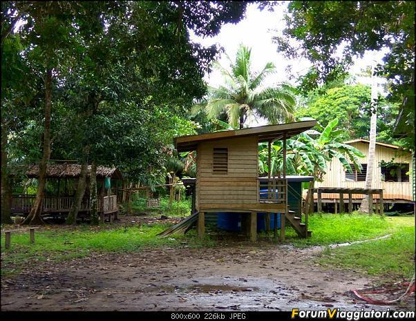 [Singapore e Borneo Malese] - Sulle tracce di Sandokan - Agosto 2017-img_20170817_122038_hdr.jpg