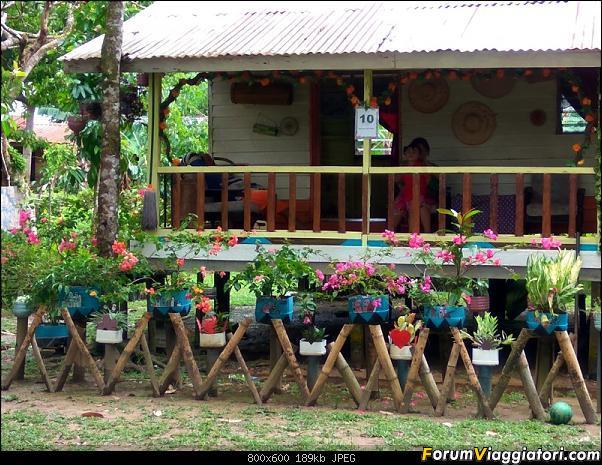 [Singapore e Borneo Malese] - Sulle tracce di Sandokan - Agosto 2017-img_20170817_122100_hdr.jpg