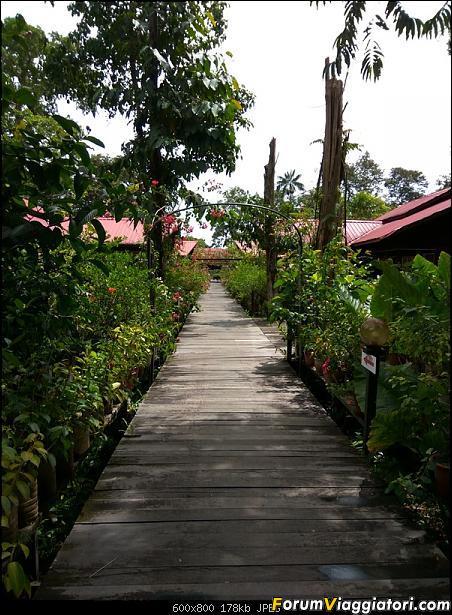 [Singapore e Borneo Malese] - Sulle tracce di Sandokan - Agosto 2017-img_20170817_104716_hdr.jpg
