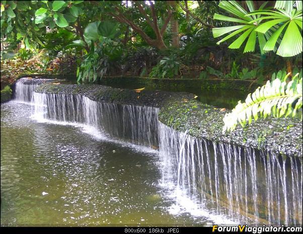 [Singapore e Borneo Malese] - Sulle tracce di Sandokan - Agosto 2017-img_20170819_133523.jpg