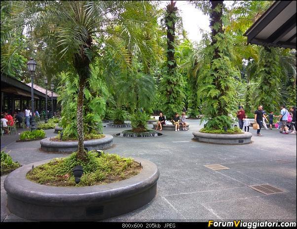 [Singapore e Borneo Malese] - Sulle tracce di Sandokan - Agosto 2017-img_20170819_143734.jpg