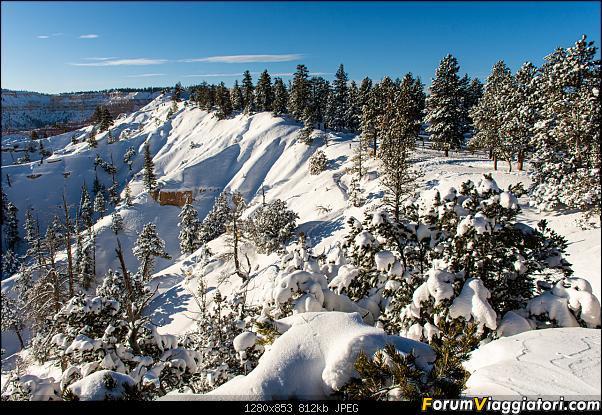 """La neve sul Bryce Canyon AKA """"Che meraviglia!"""" - Dic 2019-d72_2537.jpg"""