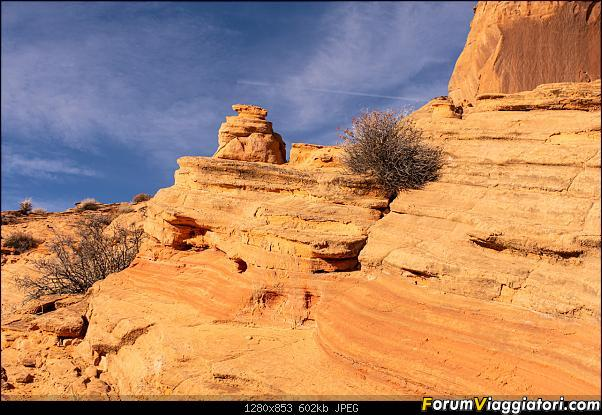 """La neve sul Bryce Canyon AKA """"Che meraviglia!"""" - Dic 2019-d72_3299.jpg"""