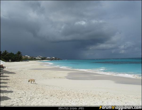 ANGUILLA - 30 spiagge possono bastare.. - Fine Gennaio 2013-anguilla-gennaio-2012-036.jpg