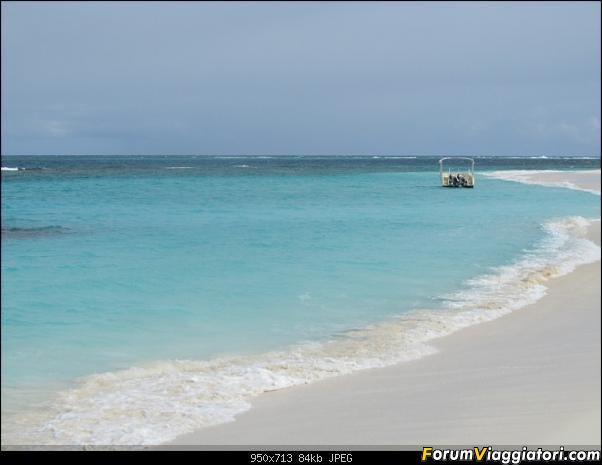ANGUILLA - 30 spiagge possono bastare.. - Fine Gennaio 2013-anguilla-gennaio-2012-040.jpg