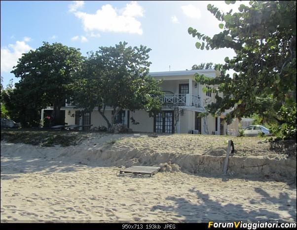 ANGUILLA - 30 spiagge possono bastare.. - Fine Gennaio 2013-anguilla-gennaio-2012-065.jpg