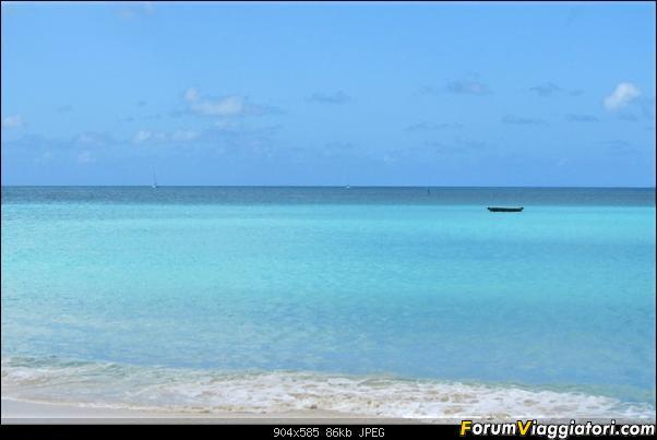ANGUILLA - 30 spiagge possono bastare.. - Fine Gennaio 2013-anguilla-gennaio-2012-015-2-.jpg