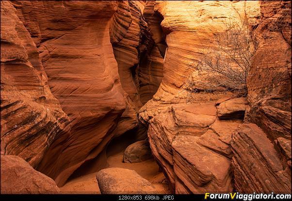 """La neve sul Bryce Canyon AKA """"Che meraviglia!"""" - Dic 2019-d72_3726.jpg"""