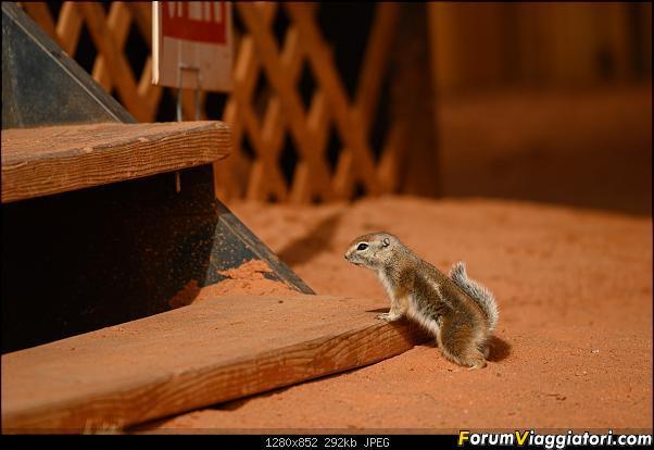 """La neve sul Bryce Canyon AKA """"Che meraviglia!"""" - Dic 2019-zz6_4439.jpg"""