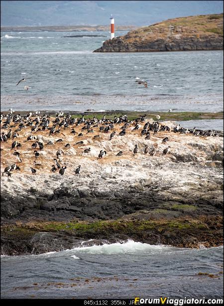 In Patagonia verso la fin del mundo-_dsc5812.jpg