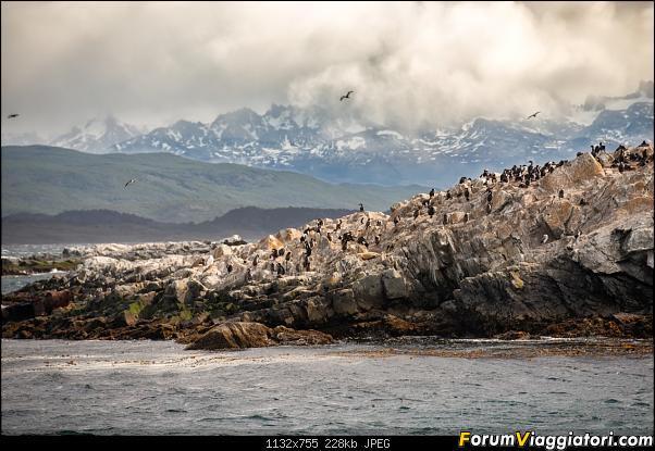 In Patagonia verso la fin del mundo-_dsc5893.jpg