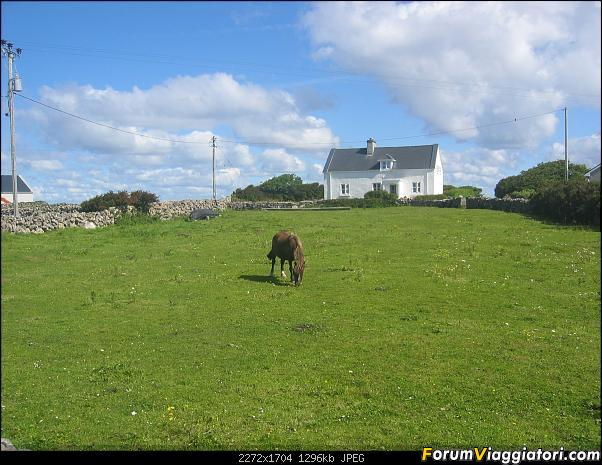 2 settimane nella verde IRLANDA-131-.jpg