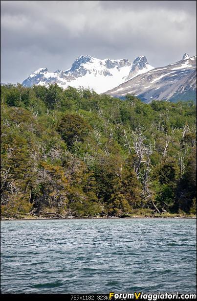 In Patagonia verso la fin del mundo-_dsc6001.jpg
