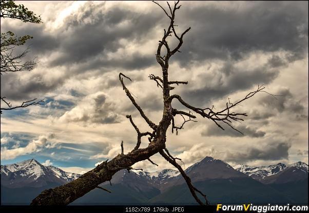 In Patagonia verso la fin del mundo-_dsc6007.jpg