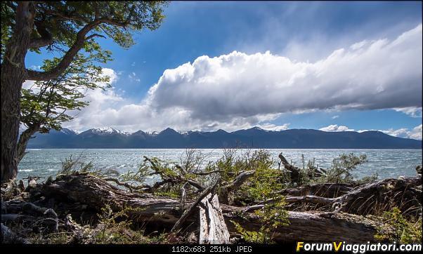 In Patagonia verso la fin del mundo-dsc_5354.jpg
