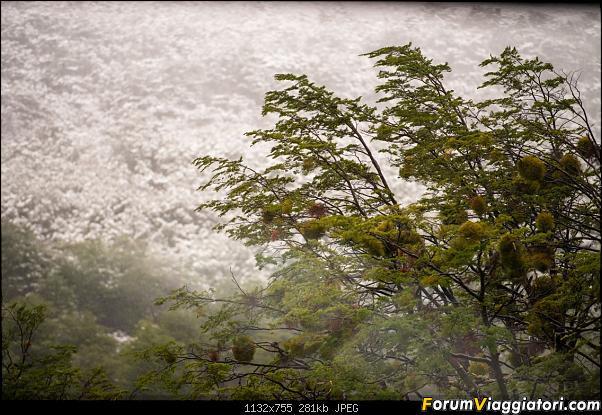 In Patagonia verso la fin del mundo-_dsc6019.jpg
