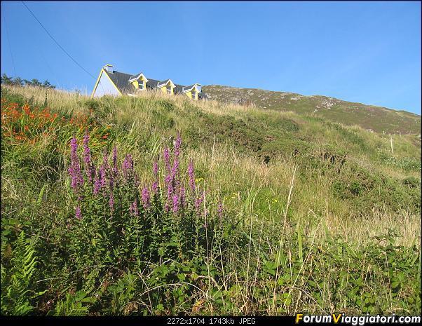 15 giorni  nella bella e verde  Irlanda-174-casetta-cima-collina.jpg