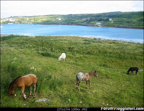15 giorni  nella bella e verde  Irlanda-183-.jpg