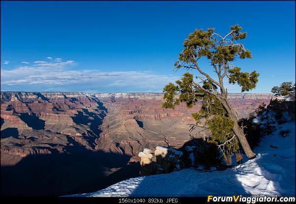 """La neve sul Bryce Canyon AKA """"Che meraviglia!"""" - Dic 2019-d72_5104.jpg"""