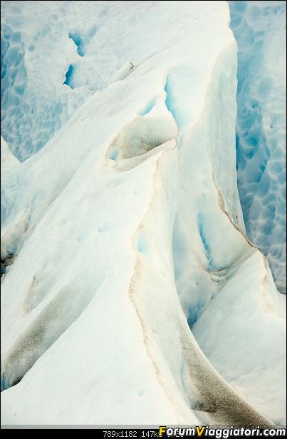 In Patagonia verso la fin del mundo-_dsc6160.jpg