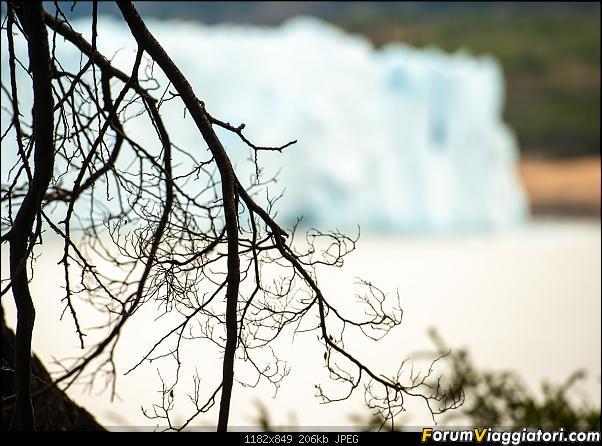 In Patagonia verso la fin del mundo-_dsc6192.jpg