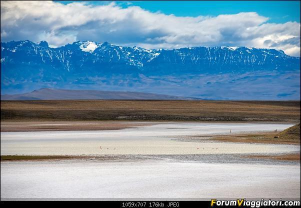 In Patagonia verso la fin del mundo-_dsc6261.jpg