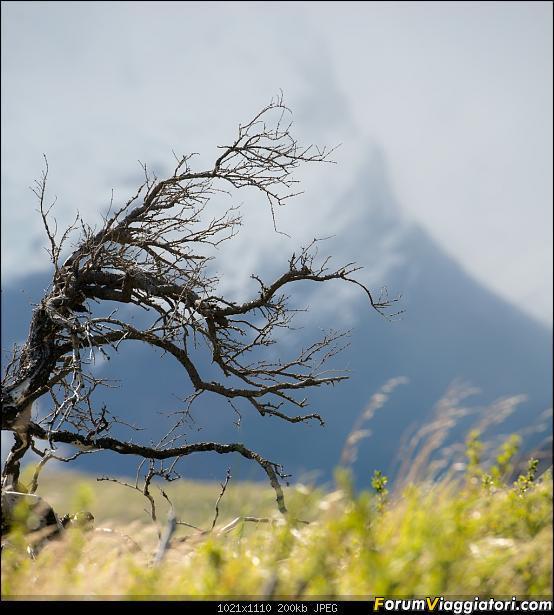 In Patagonia verso la fin del mundo-_dsc6389.jpg