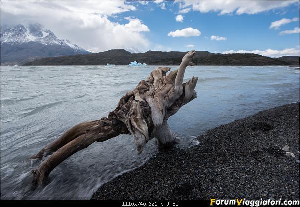 In Patagonia verso la fin del mundo-dsc_5456.jpg