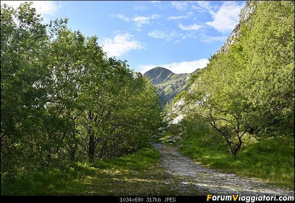 Trekking sulla Pania della Croce - Alpi Apuane-dsc_5542.jpg