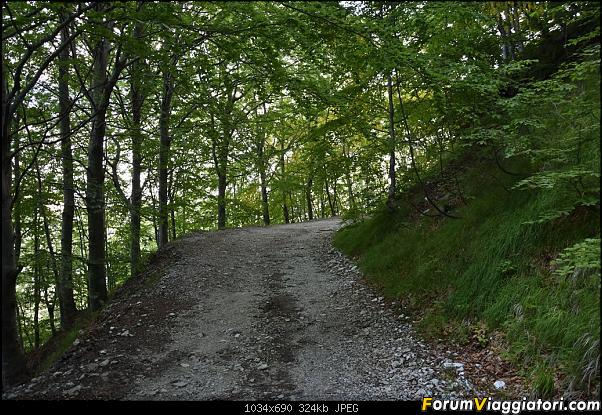 Trekking sulla Pania della Croce - Alpi Apuane-dsc_5538.jpg