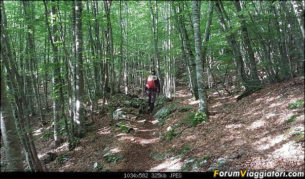 Trekking sulla Pania della Croce - Alpi Apuane-20200621_075353.jpg
