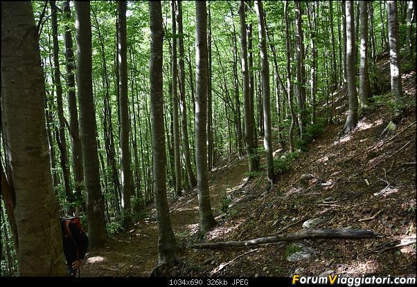 Trekking sulla Pania della Croce - Alpi Apuane-dsc_5555.jpg
