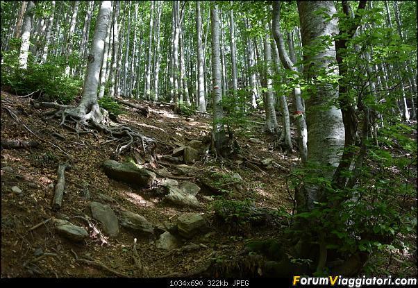 Trekking sulla Pania della Croce - Alpi Apuane-dsc_5554.jpg