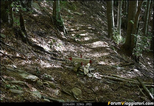 Trekking sulla Pania della Croce - Alpi Apuane-dsc_5553.jpg