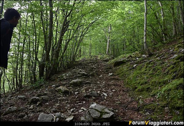 Trekking sulla Pania della Croce - Alpi Apuane-dsc_5551.jpg