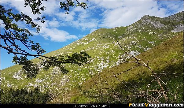 Trekking sulla Pania della Croce - Alpi Apuane-20200621_084245.jpg
