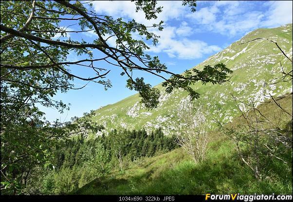 Trekking sulla Pania della Croce - Alpi Apuane-dsc_5561.jpg