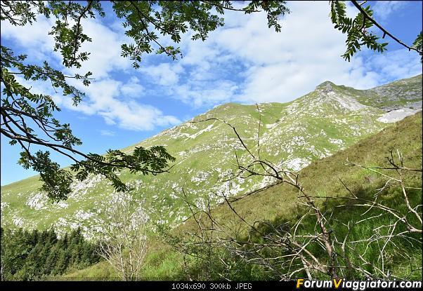 Trekking sulla Pania della Croce - Alpi Apuane-dsc_5560.jpg