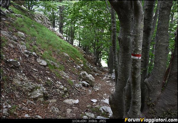 Trekking sulla Pania della Croce - Alpi Apuane-dsc_5572.jpg