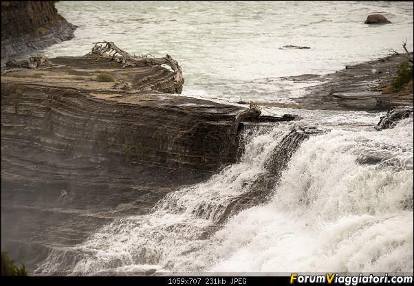 In Patagonia verso la fin del mundo-_dsc6525.jpg