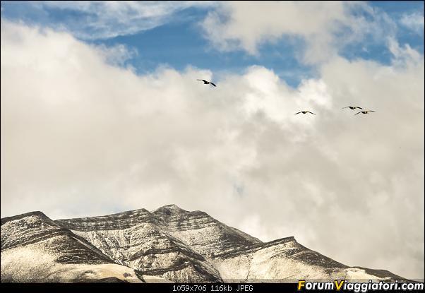 In Patagonia verso la fin del mundo-_dsc6571_a.jpg