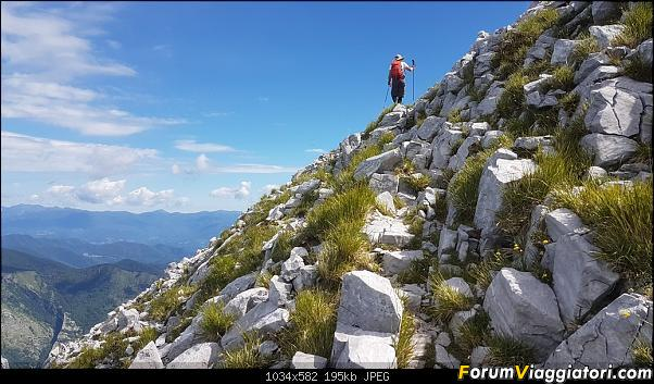 Trekking sulla Pania della Croce - Alpi Apuane-20200621_101955.jpg