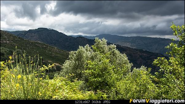 Un'estate tutta italiana: in montagna da sud a nord-dsc_3950.jpg