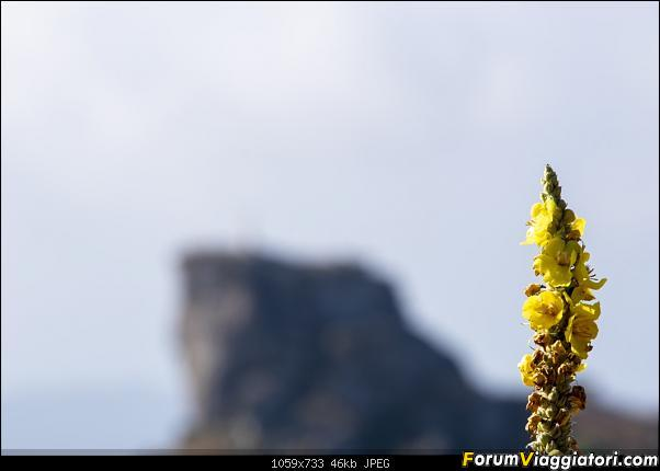 Un'estate tutta italiana: in montagna da sud a nord-dsc_4160.jpg