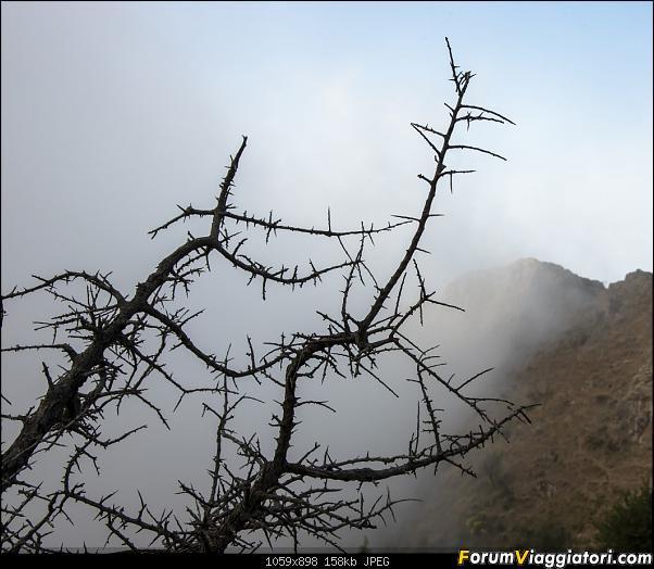 Un'estate tutta italiana: in montagna da sud a nord-dsc_4182.jpg