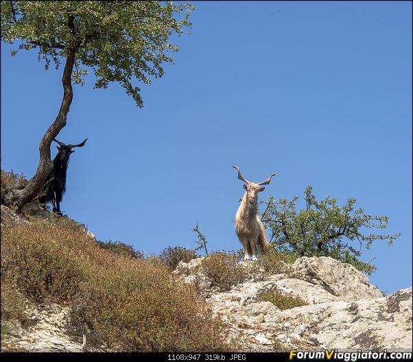 Un'estate tutta italiana: in montagna da sud a nord-dsc_4386.jpg