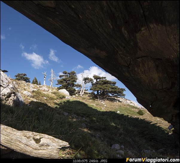 Un'estate tutta italiana: in montagna da sud a nord-dsc_5501.jpg