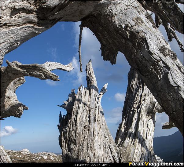 Un'estate tutta italiana: in montagna da sud a nord-dsc_5516.jpg