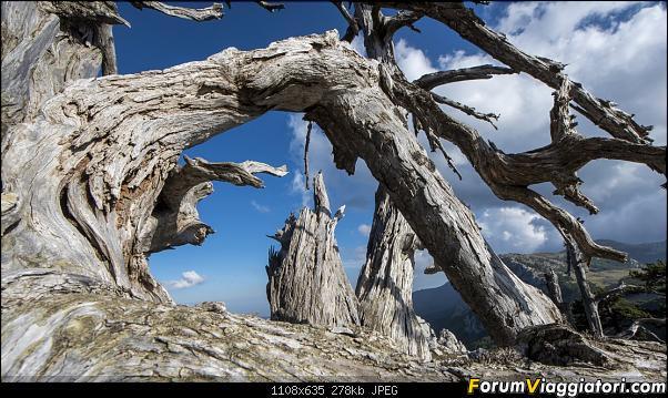 Un'estate tutta italiana: in montagna da sud a nord-dsc_5517.jpg