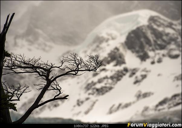 In Patagonia verso la fin del mundo-_dsc6682.jpg